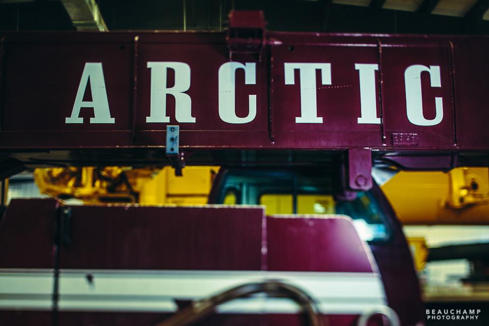 Arctic Crane for web-0663