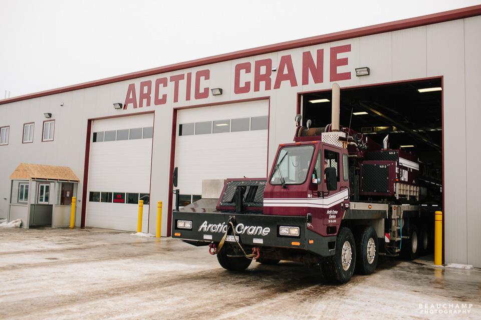 Arctic Crane for web-0727