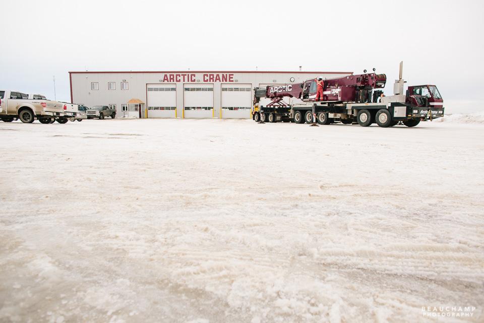 Arctic Crane for web-0783