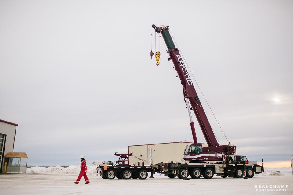 Arctic Crane for web-0825