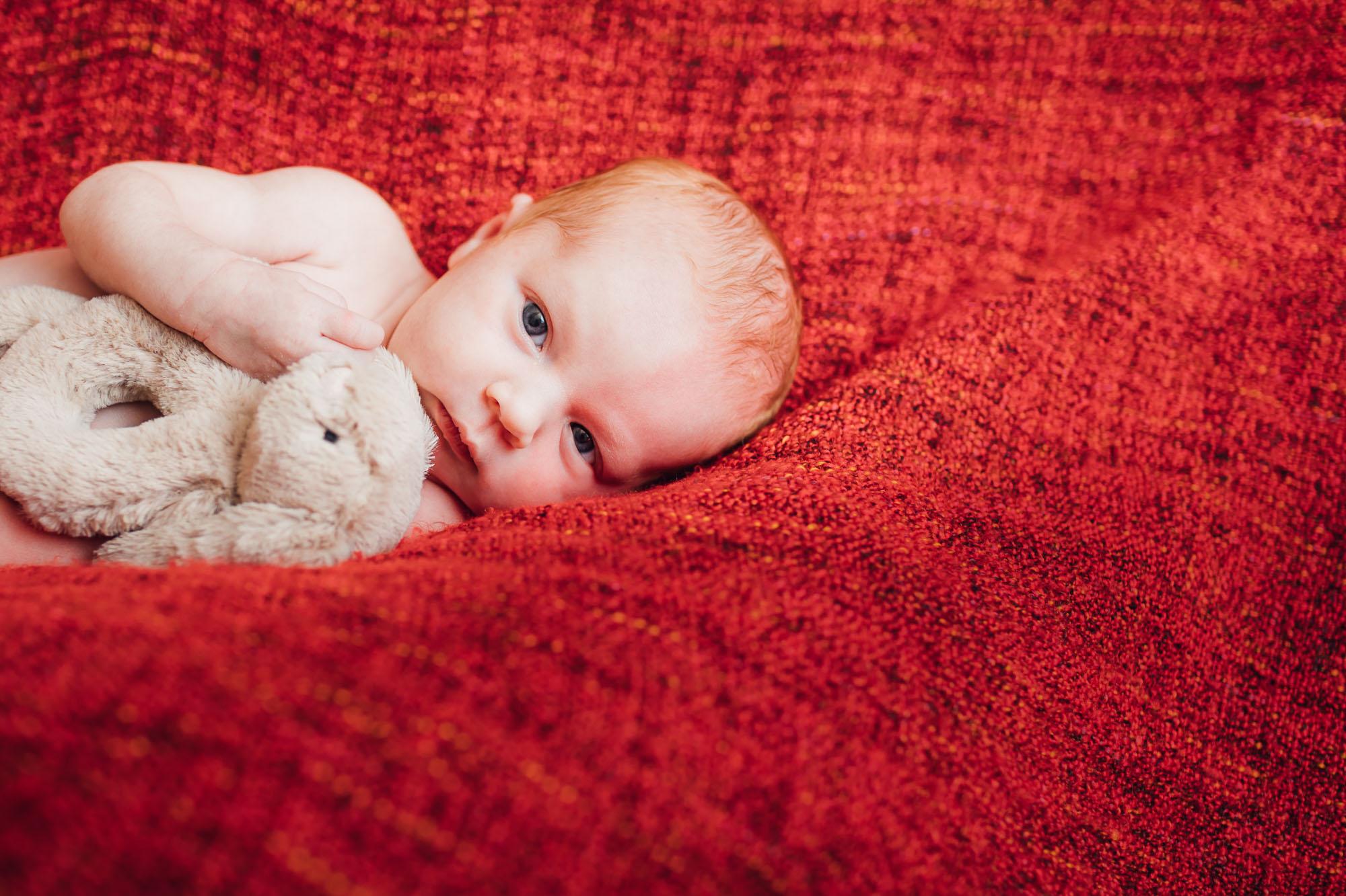 Newborn Megan